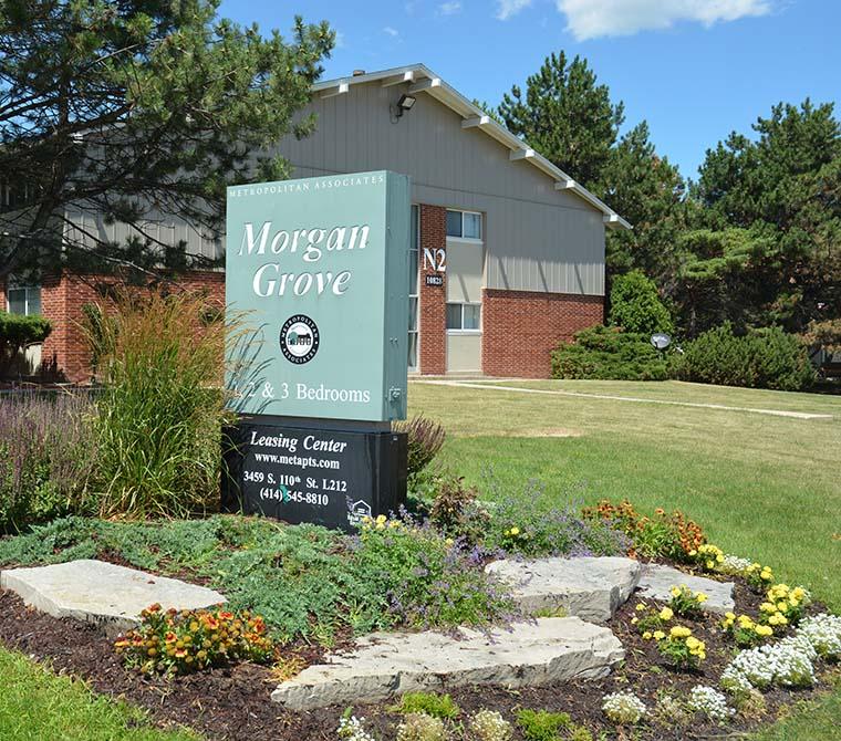 Morgan Grove